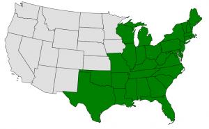 Beech map