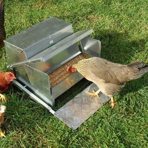 Grandpas Feeders Automatic Chicken Feeder