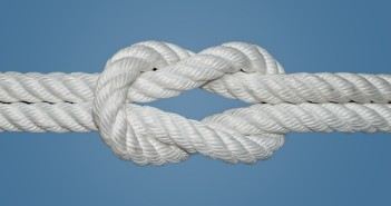 Basic Survival Knots