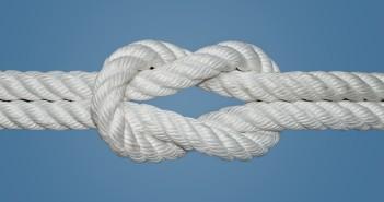 Basic Survival Knots