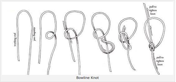 Bowline knot alternative view