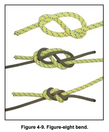 Figure Eight Bend knot