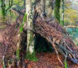 how to build a basic survival shelter