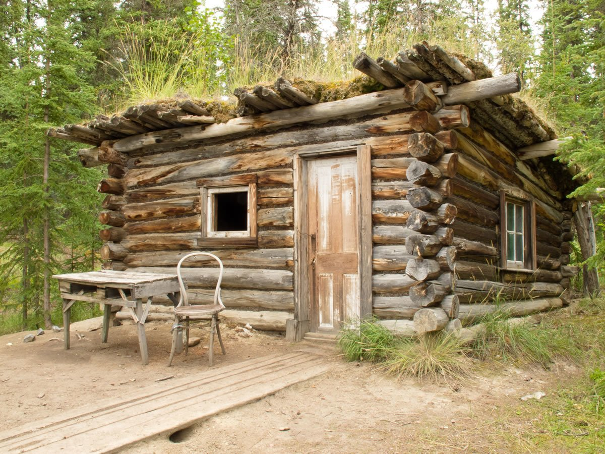How To Build A Basic Cabin Survival Watchdog
